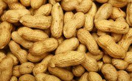 Pražené arašídy častěji spouštějí alergii 3