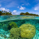 Neuvěřitelné záběry. Takto vypadá svět pod vodní hladinou 3