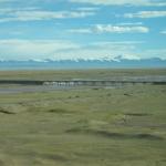Proč lidé začali žít pod Himalájemi? Odpovědí je ječmen