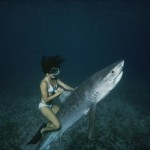 Žralok jako vodní skútr? Tito lidé jsou šílenci