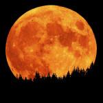 Luxusní poslední odpočinek: prožijte věčnost na Měsíci