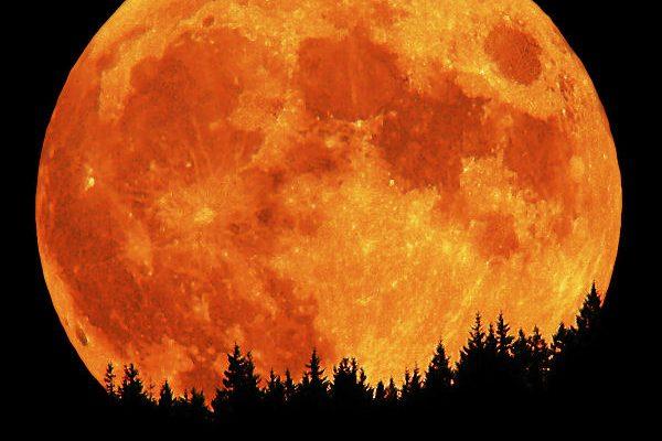 Luxusní poslední odpočinek: prožijte věčnost na Měsíci 1
