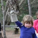 Ďábelské dívka se sovou: Internet si ji podal