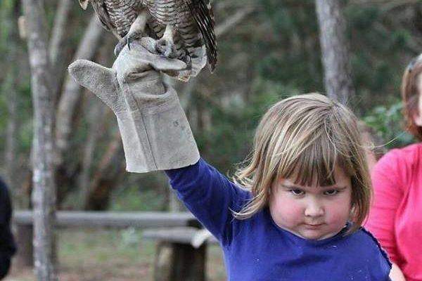 Ďábelské dívka se sovou: Internet si ji podal 1