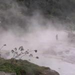 Podívejte se na řeku, v níž se zvířata vaří zaživa
