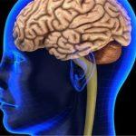 Otřes mozku a jeho následky by u dětí mohl odhalit plivanec 6