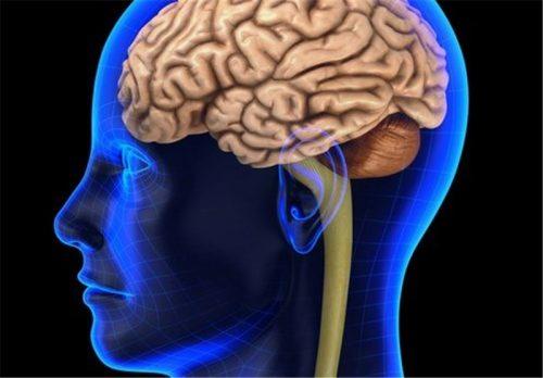 Otřes mozku a jeho následky by u dětí mohl odhalit plivanec 1