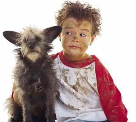 Psi mohou ochránit děti před alergiemi a obezitou 1