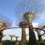 5 NEJVYHLEDÁVANĚJŠÍCH MÍST V CENTRU SINGAPURU