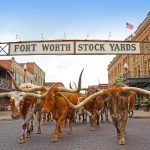 Texas a jeho atrakce 2