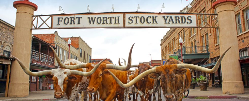 Texas a jeho atrakce 1