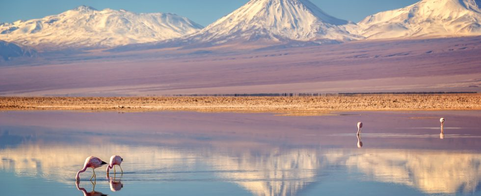 Poušt Atacama v severním Chile 1