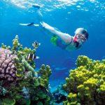 Velký bariérový útes v Austrálii 4