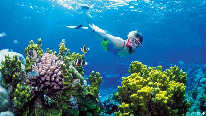 Velký bariérový útes v Austrálii 1