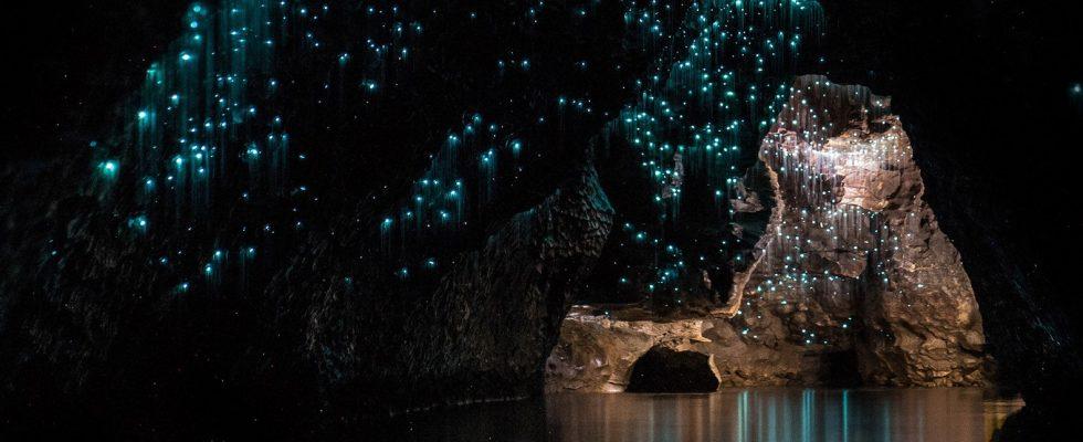 Přírodní atrakce ve Waitomo, Nový Zéland 1