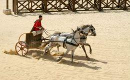 V Chorvatsku vykopali pohřbený římský vozík i s koňmi 9