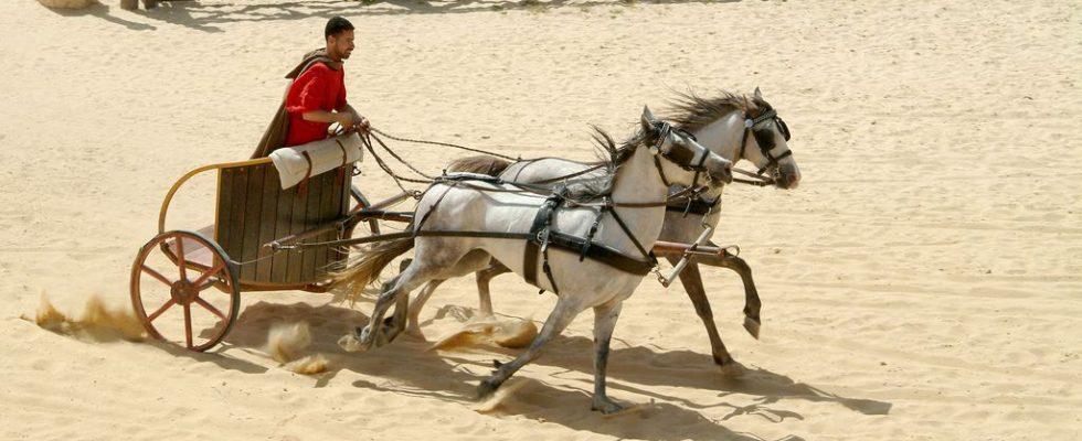 V Chorvatsku vykopali pohřbený římský vozík i s koňmi 1
