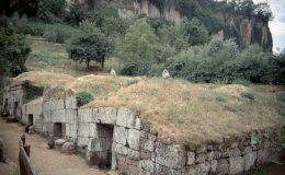 Psi dokážkou vyčenichat starověké hrobky 7