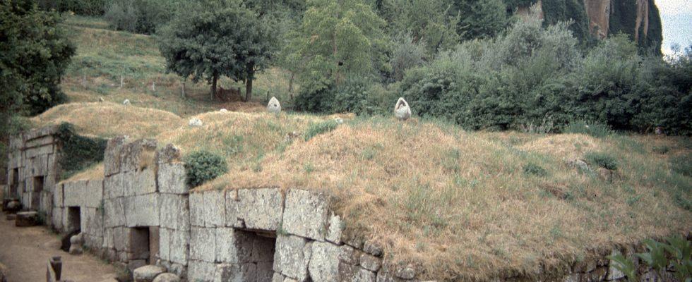 Psi dokážkou vyčenichat starověké hrobky 1