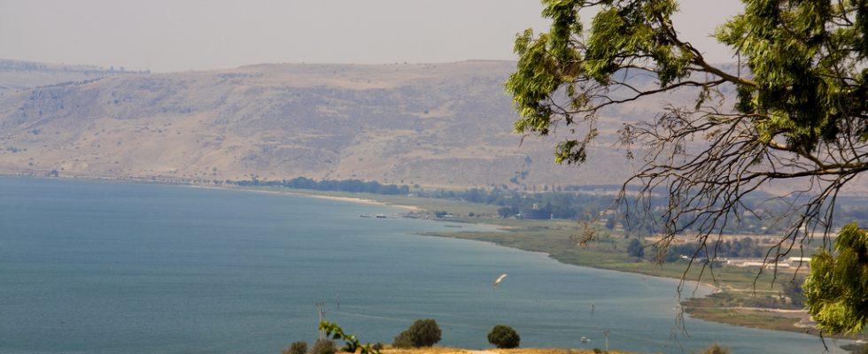 Studie odhalila, že lidé přišli do Levanty z Evropy před 40 tisíci lety 1