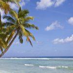 Víte, kde leží Kokosové ostrovy? 4