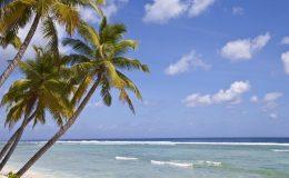 Víte, kde leží Kokosové ostrovy? 8