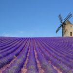 Některé atrakce francouzské Provence 13
