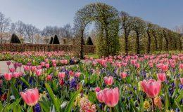 Nejluxusnější zahrady světa 5