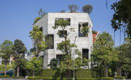 House for Trees – dům, kterým prorůstají stromy 6