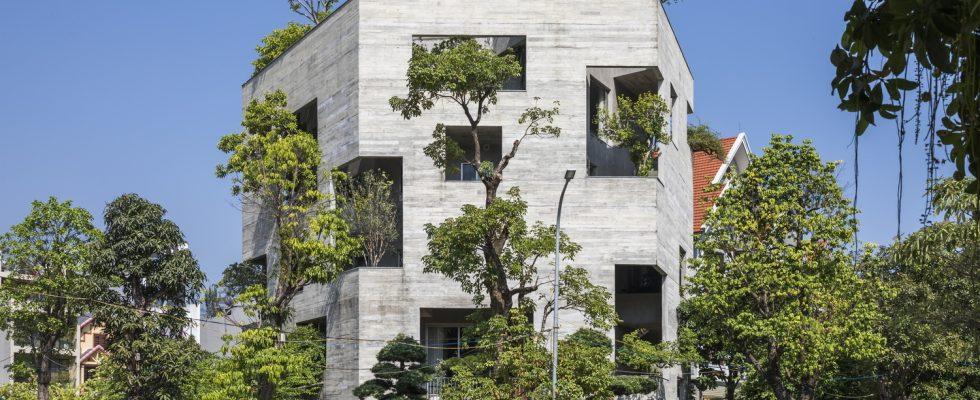 House for Trees – dům, kterým prorůstají stromy 1