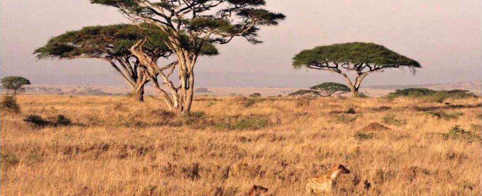 Hlavní důvody, proč navštívit Zambii 1