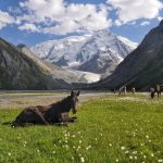 Kazachstán – země přírodních divů 7