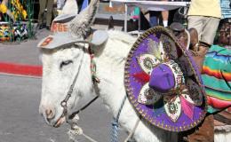 Úžasné a bizarní mexické slavnosti 2