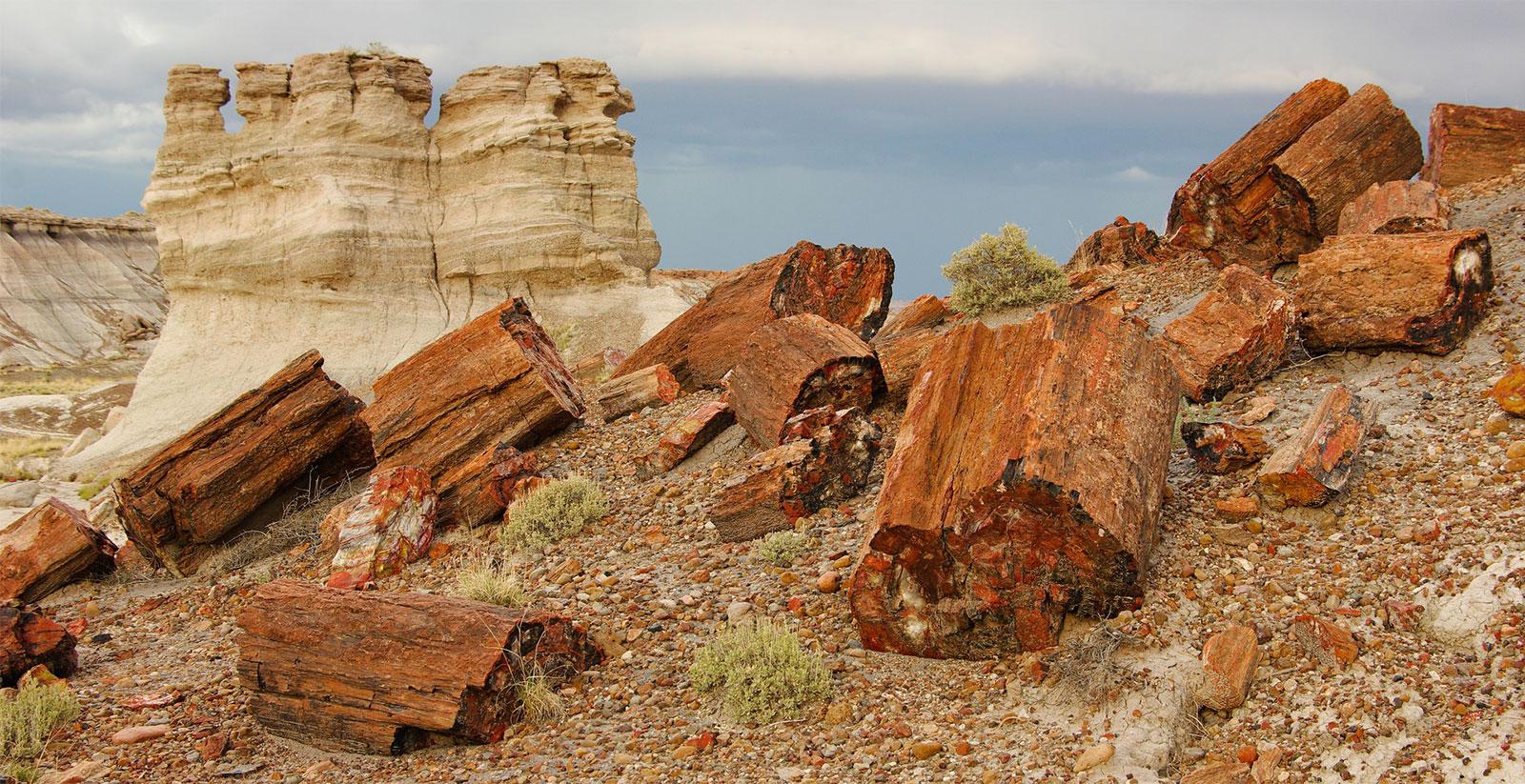 Přírodní parky a monumenty Arizony 2