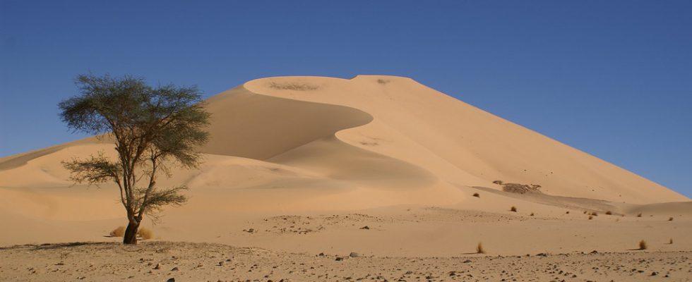 Niger - země vytvarovaná obchodními trasami 1