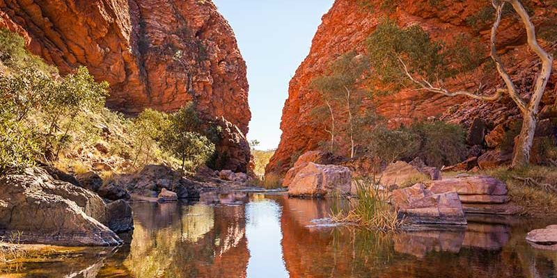 Alice Springs a okolí 1