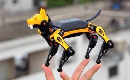 Bittle - programovatelný robotický pes 10