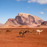10 věcí, které je potřeba vědět před návštěvou Jordánska 5