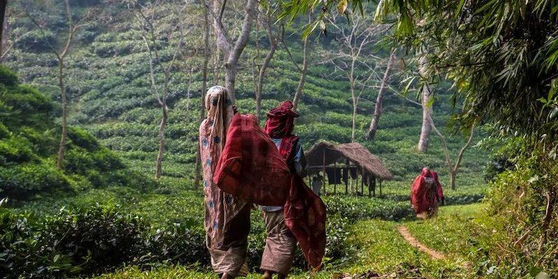Bangladéš 1