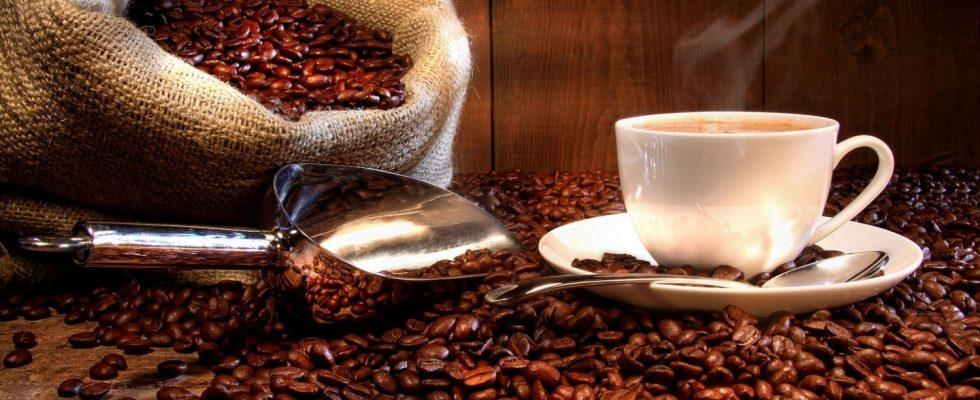 Kam za nejlepší kávou 1