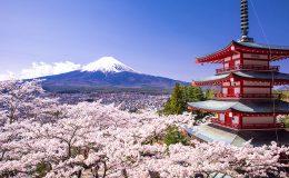 Kam se podívat v Japonsku 9