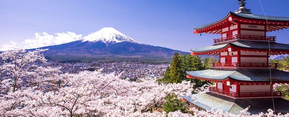 Kam se podívat v Japonsku 1