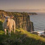 Hlavní turistické atrakce Irska 5