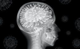 Co víme o dopadu covid-19 na mozek 7