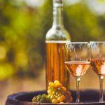 Seznamte se s oranžovým vínem 12