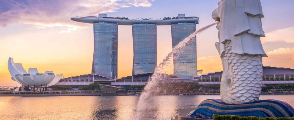 Perfektní den v Singapuru 1
