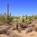 Přírodní parky a monumenty Arizony 7
