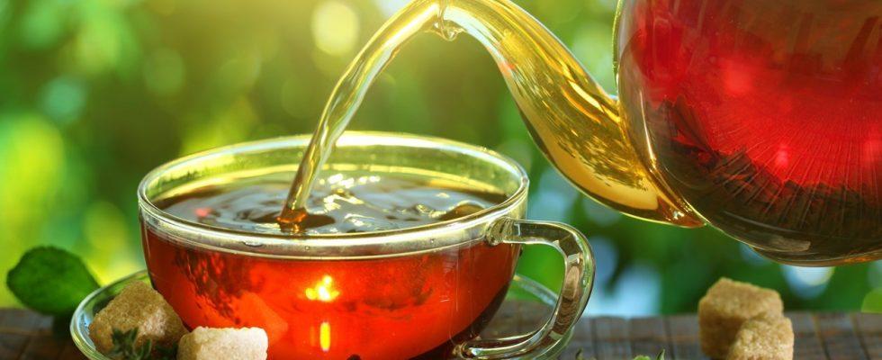 O čaji a jeho druzích 1