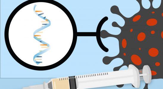 Vakcíny mRNA proti covid-19 4