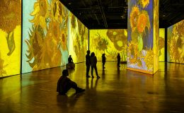 V USA můžete vstoupit do obrazů Vincenta van Gogha 4